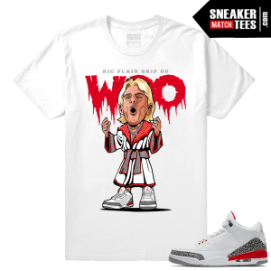 Ric Flair Drip shirt