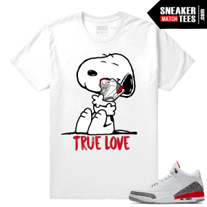 Sneaker Match Tees for Jordans Retro 3
