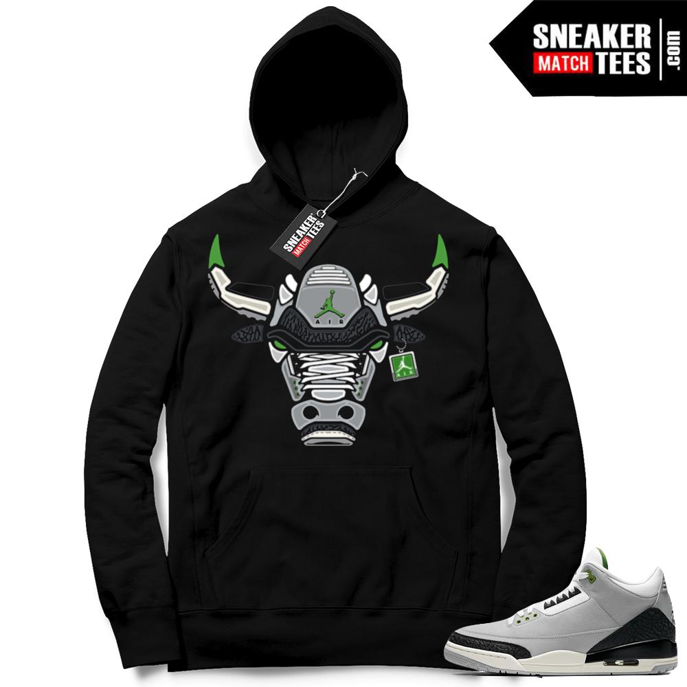 Air Jordan 3 Hoodie Chlorophyll