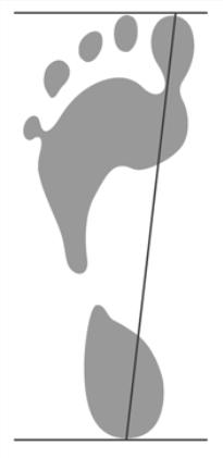 Dihope - женские кроссовки носки