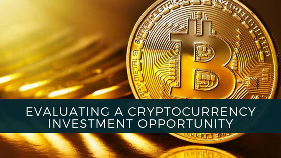 Evaluating a Cryptocurrency Investment Opportunity