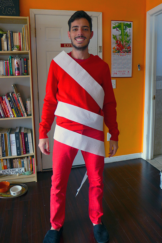 Cheap Costume Ideas: Red and White