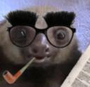 SlothDad