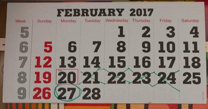 Wall Calendar Crazies