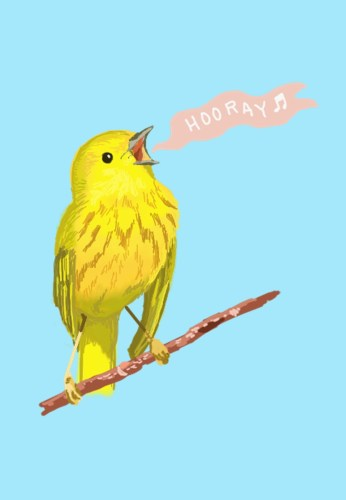 Hooray! Warbler by Amanda Wood