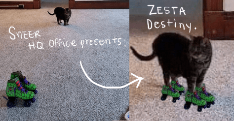 Sneer HQ Office presents: Zesta Destiny. Zesta the Cat stands far away in a very empty room, TMNT rollerskates are in the foreground. The image is split into two, and an arrow points to a new low resolution picture of Zesta wearing those rollerskates.