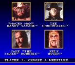 WWF Super WrestleMania 03