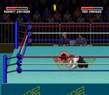 WWF Super WrestleMania 07