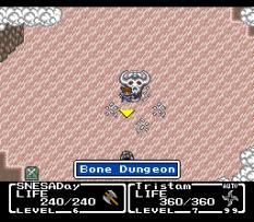 Final Fantasy Mystic Quest 17