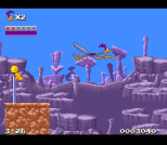 The flags scattered around gives you a checkpoint and a point bonus at the end of the stage.