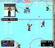NHLPA Hockey 93 10