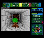 Dungeon Master 19