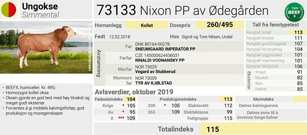 Nixon PP av Ødegården