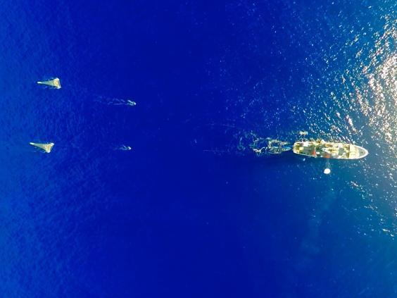 ship-ocean-cleanup.jpg