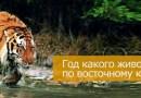 Год какого животного 2022 по восточному календарю