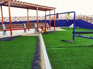 Desarrollo Proyecto Colegio de Contadores
