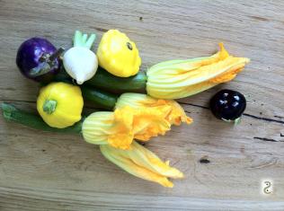Stuffed zucchini flowers and roasted mini veggies http://wp.me/p3iY4S-kM