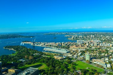 View of the City from Sydney Tower Eye