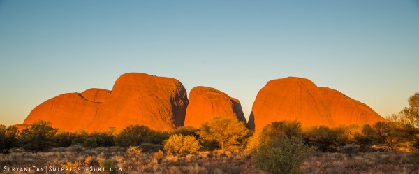 The many colours of Kata Tjuta