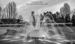 International Fountain   Seattle   USA