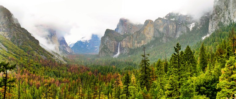 Travel tips USA Yosemite National Park 1