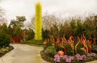 Chihuly Garden and Glass Exhibit 16