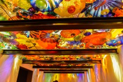 Chihuly Garden and Glass Exhibit 3
