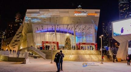 Ripley's Aquarium, located next to CN Tower