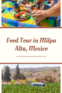 Food Tour in Milpa Alta, Mexico
