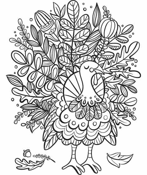 fall foliage turkey