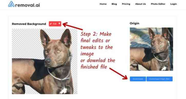how to use a photo background removal tool - step 2