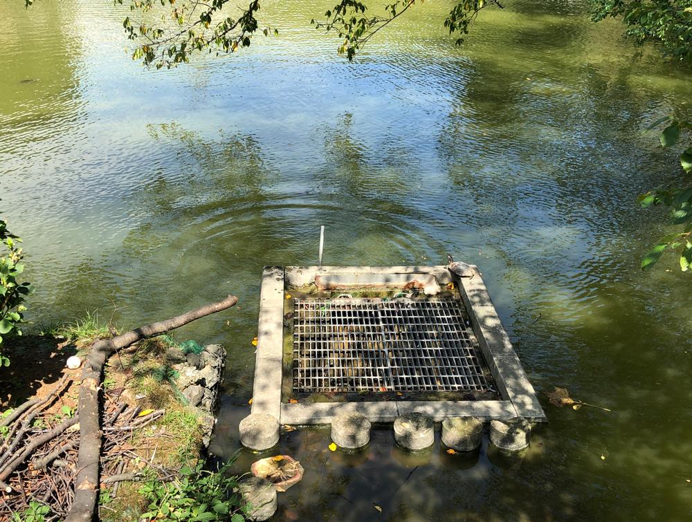 2019年9月8日台風15号の爪痕・がけ崩れ・谷戸池の様子