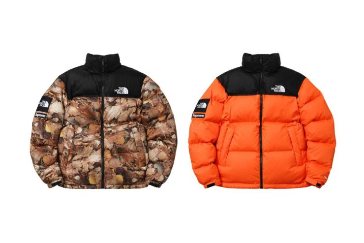 supreme-x-the-north-face-2016-fall-winter-collection-15