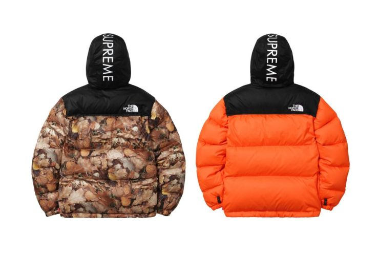 supreme-x-the-north-face-2016-fall-winter-collection-16