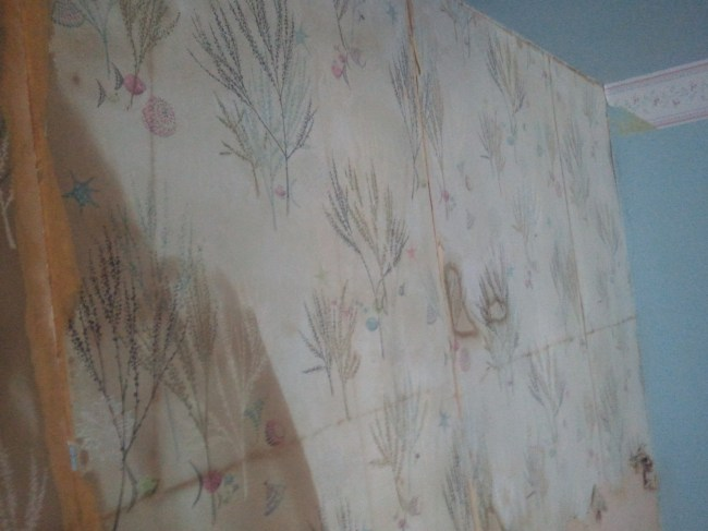 This the second layer of Amityville wallpaper, with the top border up there in the corner.
