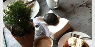 Skagit County Coffee Tweets Cafe