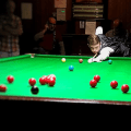 New Talent Sean Maddocks Wows at First Snooker Exhibition