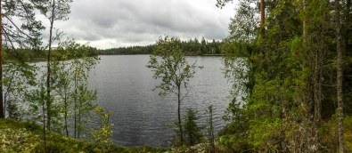 Hiking-Trail Sammalistonpolku in Finnland