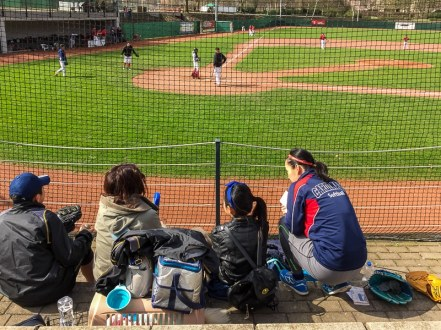 Am Spielfeldrand beim Baseball - Kölner Fans