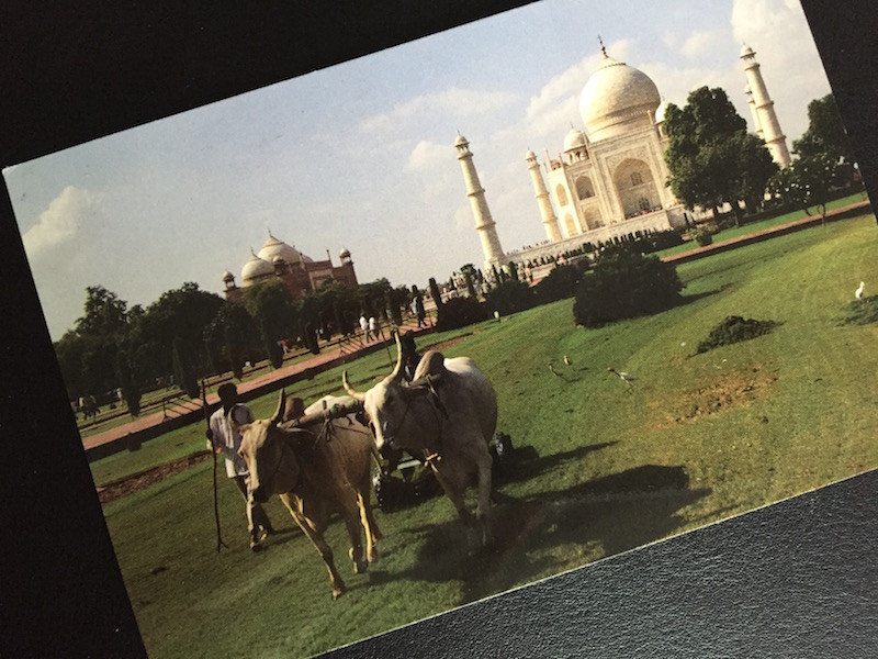 Postcard of the Week Taj Mahal, Agra (Indien)