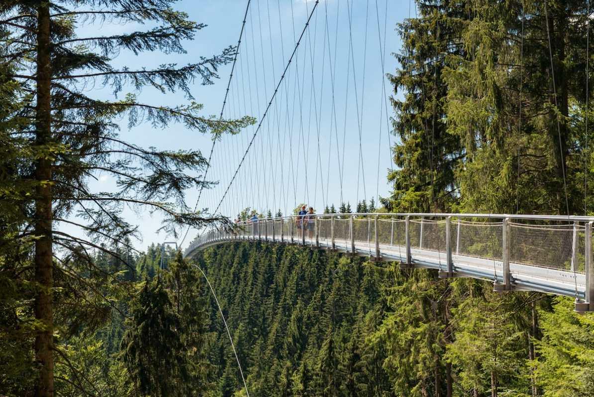 Hängebrücke WILDLINE Foto: Simon Bierwald/Indeed Photography