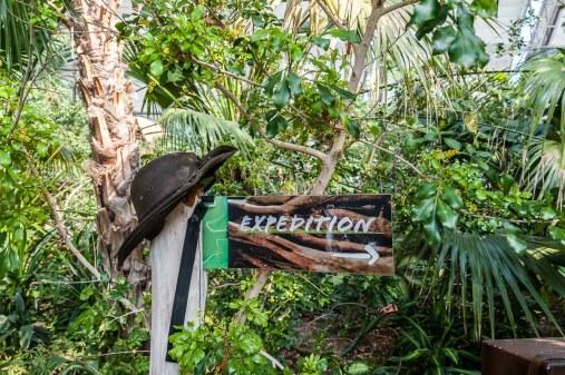 Regenwaldtour