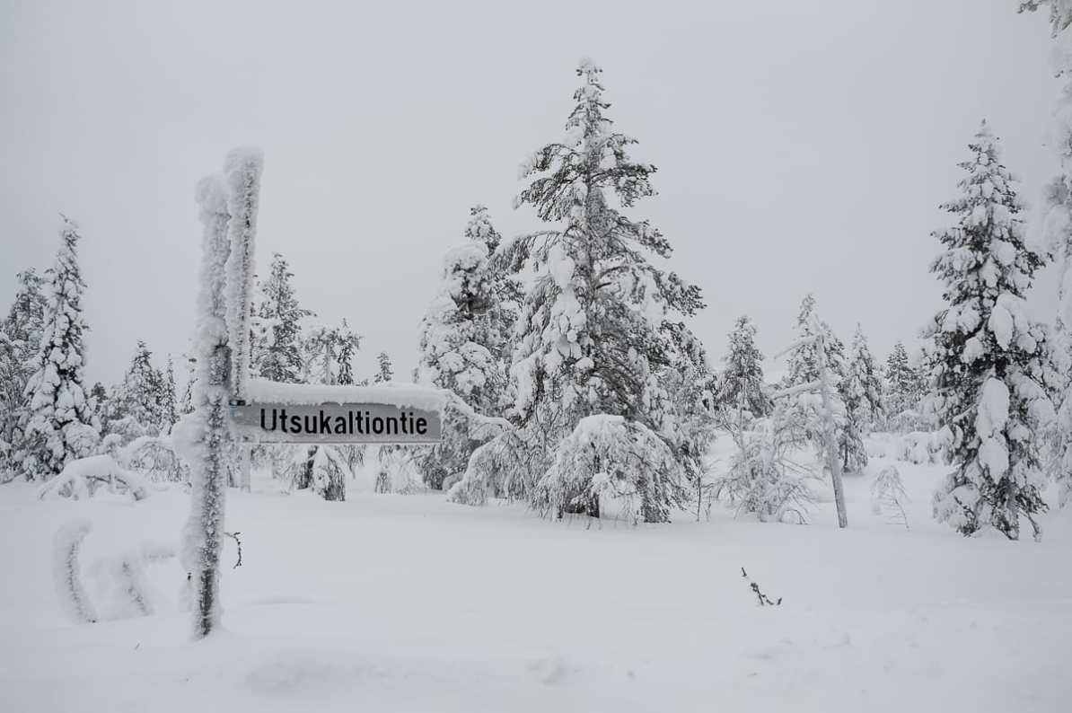 Dicker Schnee überall