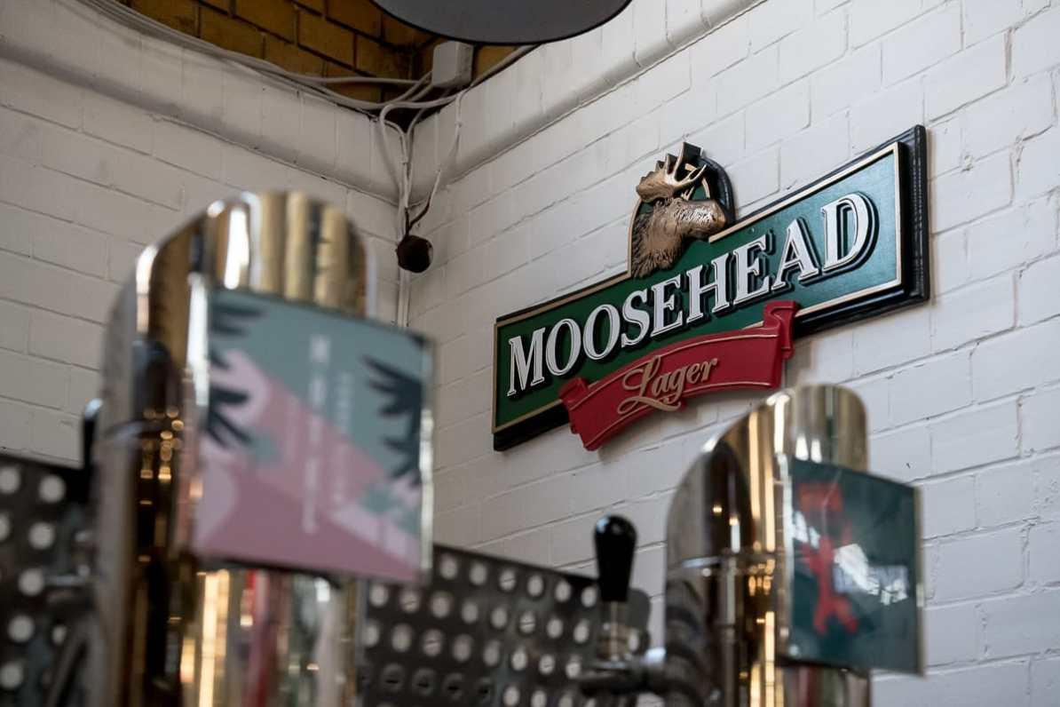 Hier gibt es Moosehead Lager