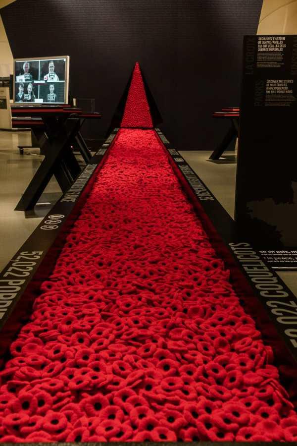 """Die """"Poppies"""" - so viele im Juno Beach Centre, wie es kanadische Tote im Zweiten Weltkrieg gab."""