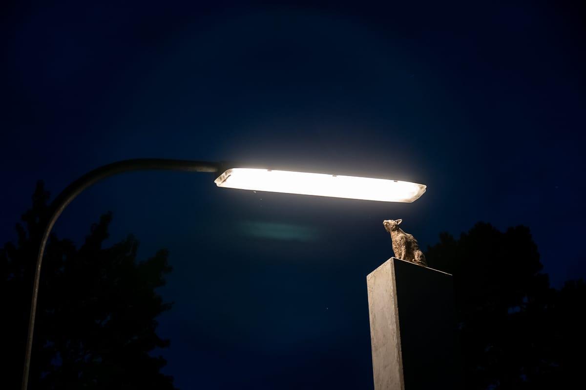I Solarkatze - Dauerinstallation beim Lichtparcours in Braunschweig.
