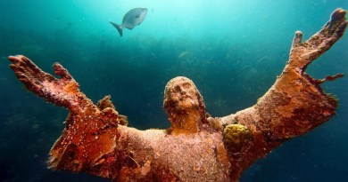 John Pennekamp Coral Reef State Park (Key Largo,FL)