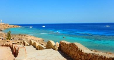 Sharm-el-Sheikh-Faraana-Reef-Oasis