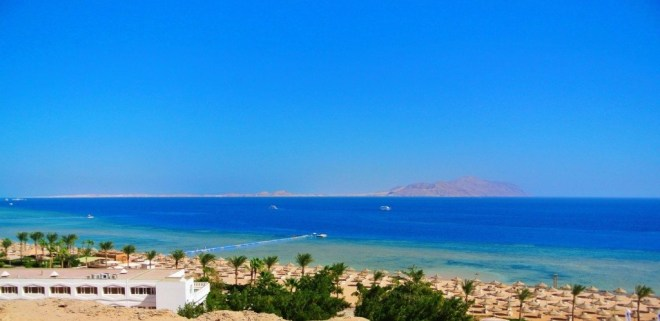 Snorkeling in Egypt - Sharm El Sheikh 3