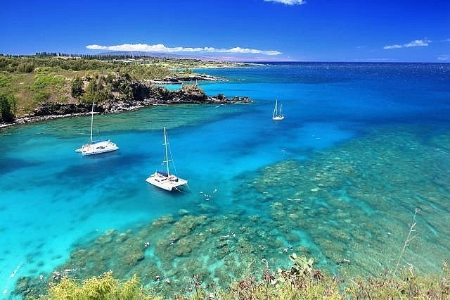 snorkeling-maui-beaches-honolua